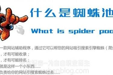 蜘蛛池是什么?蜘蛛池是不是一个骗局?